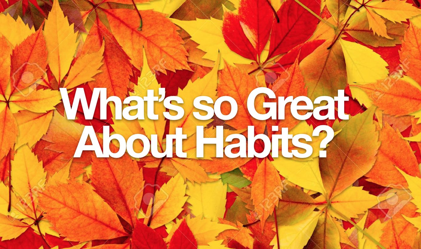 What's So Great About Habits?